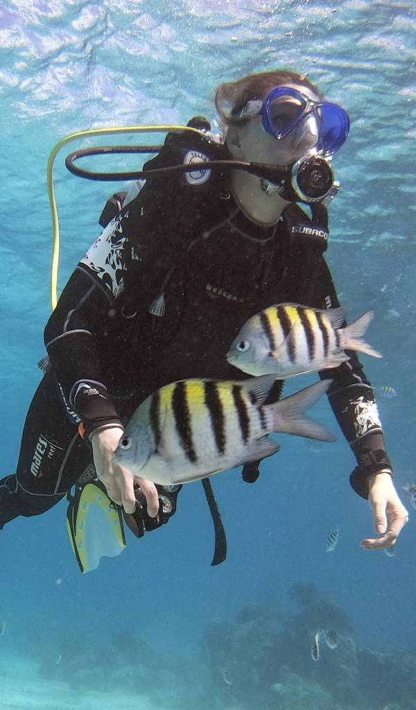 Tourism, diving and the COVID situation