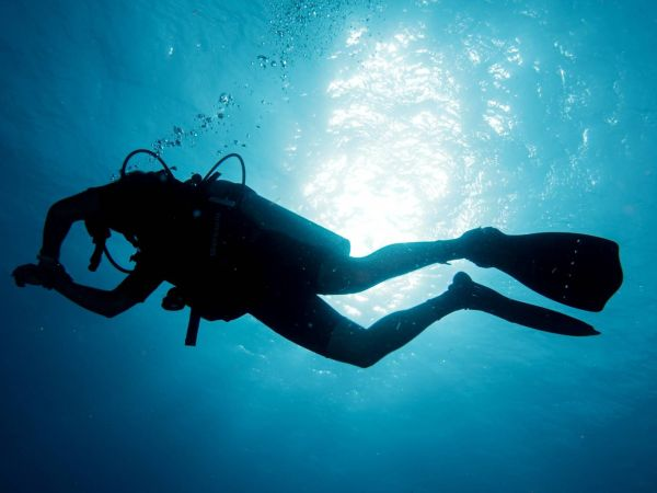 Why should you try scuba diving?