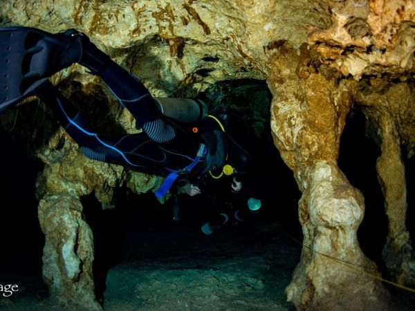 The best cenotes to Scuba Dive in the Riviera Maya